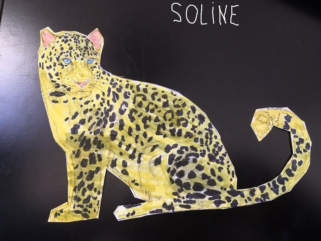 Soline-2